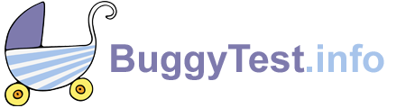 BuggyTest_Logo_neu